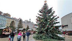 Vánoce budou zřejmě na blátě. Na Štědrý den má být přes 5 stupňů