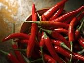 Bylinková abeceda. Chilli neobsahuje jen kapsaicin, ale i vitaminy A, C a E
