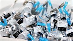 Devatenáct zemí EU chce pomoci těm, kteří na tom s očkováním nejsou dobře. Češi se odmítli přidat