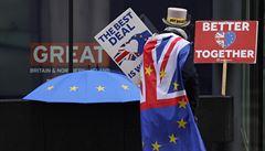 Brexit činí v Británii problémy zejména menším zpracovatelům, uvádí průzkum