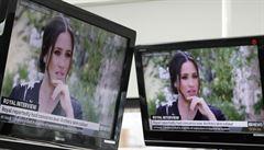 'Nastolené otázky jsou znepokojivé.' Buckinghamský palác se poprvé vyjádřil k rozhovoru s Harrym a Meghan