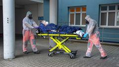 České nemocnice zatím požádaly jen o jeden převoz do zahraničí. Pacientku odvezli do Polska