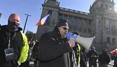 Policie při nedělních protestech zajistila přes 50 demonstrantů, mezi nimi i poslance Volného