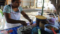 Poznejte Mexiko přes chuťové pohárky. Zkuste třeba avokádový dip