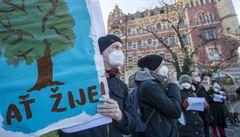 Lidé protestovali proti kácení letitého javoru na pražském nábřeží. Místo se má vydláždit