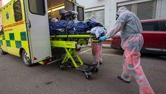 Polsko chce začít očkovat všechny dospělé, do konce srpna vyjde podle plánu vakcína na všechny