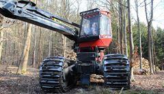 Na Medníku se masivně těží dřevo, i když právě kvete vzácný kandík. Boj s kůrovcem, reaguje úřad