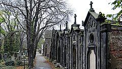Kultura se dá najít i mezi hrobkami na hřbitovech. Ty v době pandemie vybízejí k procházkám
