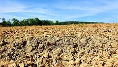 Sucho je v Česku nejhorší od dob Římské říše. Co se děje nyní, nemá za dva tisíce let obdoby, varuje vědec
