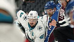 Kubalík a Hertl dali v NHL gól, na body to ani jednou nestačilo. Další Češi přihrávali