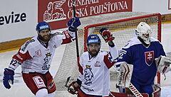 Čeští hokejisté i pošesté v přípravě na MS uspěli, zdolali Slovensko 2:1