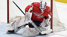 Washington v úvodu play off NHL zdolal Boston. Pastrňák si připsal asistenci, Vaněček kvůli zranění střídal