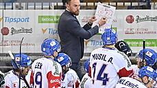 Čeští hokejisté zdolali Švédy 3:2 v prodloužení a v Euro Hockey Tour skončí druzí