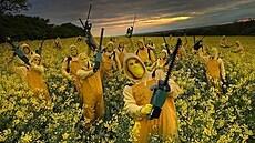 Postavičku Pac-Mana vysekala v poli Agrofertu skupina Ztohoven, škoda přesahuje 350 tisíc