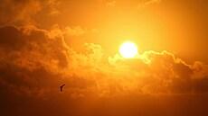 Kdy skončí chladné jaro? Teploty budou o víkendu podprůměrné, příští týden slibuje zlepšení
