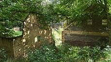 MACHALICKÁ: Pozorovat zbytečnou zkázu Trunečkova mlýna je hodně smutné