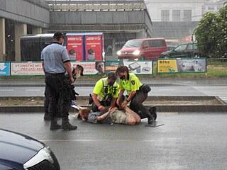 Demonstrant narušoval dopravu, tak jej policisté zpacifikovali