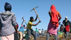 Diamantová horečka na jihu Afriky byla planým poplachem. Nalezené kameny jsou běžným minerálem