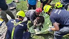 Hasiči vyprostili ze sutin v Nové Vsi živého psa. V troskách byl nejspíše od pátku
