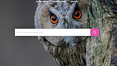 ČTK koupila fotobanku Profimedia CZ, chce zákazníkům nabídnout kompletní službu v oboru
