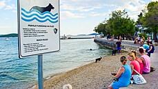Chorvatsko nabízí stále víc cyklotras i psích pláží. Některé čtyřnohé společníky ale přes hranice nepustí