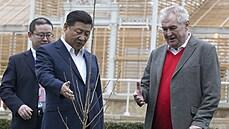 Zeman chce příští rok do Číny, najít termín ale nebude snadné. Citlivé je hlavně české předsednictví EU