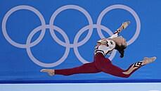 Plať a buď hrdý. Skutečným poraženým olympijských her je daňový poplatník