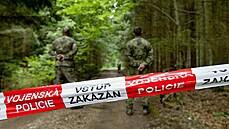 Dva vojáci utrpěli těžká zranění při výbuchu munice v Brdech. Oba čistili dopadovou plochu Kolvín