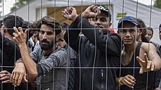 Letecké spojení s Bagdádem má posloužit k rozvrácení EU. Lukašenko pomocí ní dováží do Evropy migranty
