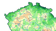 Kam na hřiby? Čeští meteorologové už nepředpovídají jen počasí, ale i možný růst hub