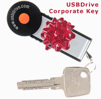 USB Drive Corporate Key